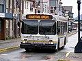 Downtown Juneau New Flyer.jpg