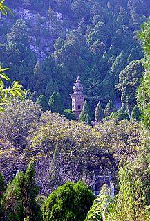 Dragon-and-Tiger Pagoda
