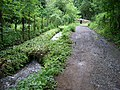 Drahanské údolí, Drahanský potok (01).jpg