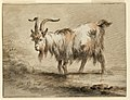 Drawing, Study of a Goat, 1772 (CH 18326093-2).jpg