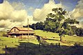 Driftwood Farm (45797036).jpeg