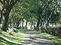 Driveway to Lochturffin House - geograph.org.uk - 519886.jpg