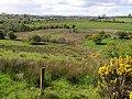 Drumlin country at Drumroosk - geograph.org.uk - 1301078.jpg