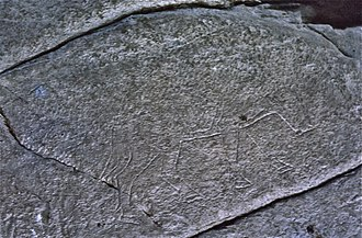 Dunadd - Pictish type boar carving in rock near the top of the hill.