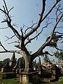 Dutch Cemetry at Chinsurah, Hooghly 03.jpg