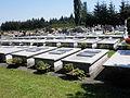 Dziegielow cemetery graves of deaconesses.JPG