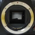 EF-S bodymount EOSkdx.png