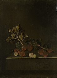 Adriaen Coorte: A Sprig of Gooseberries on a Stone Plinth
