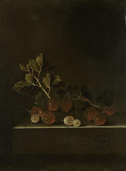 File:Een takje kruisbessen op een stenen plint Rijksmuseum SK-C-1689.jpeg