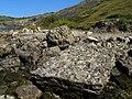 Egmont Rocks - geograph.org.uk - 909839.jpg