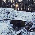 Ein Bachlauf im Winter bei Sonnenaufgang.jpg