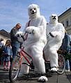 Eisbären auf Tandem.jpg
