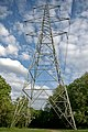 Electricity Pylon, Sale Water Park - geograph.org.uk - 447097.jpg