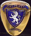 Emblem Galloway.JPG