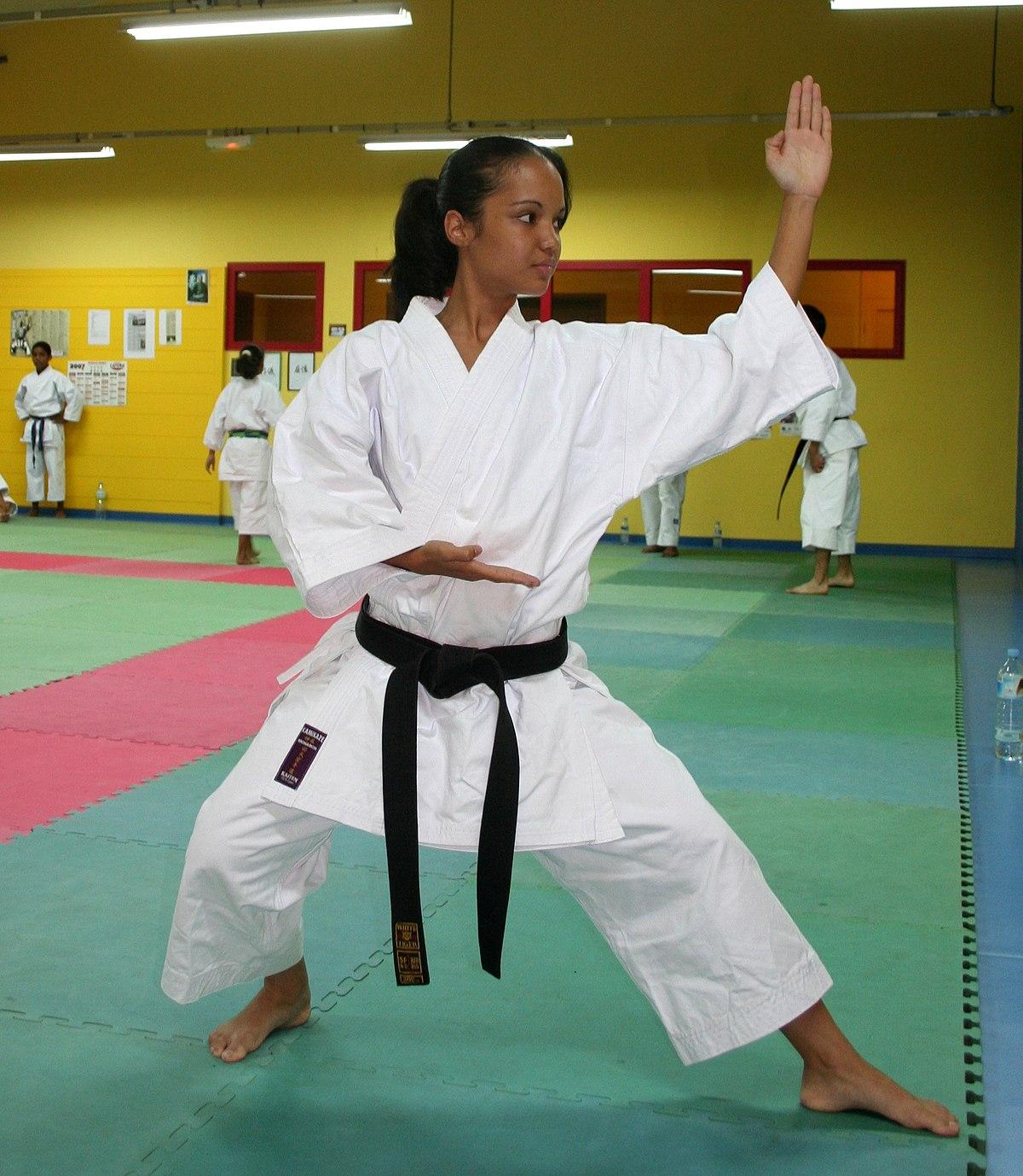 Vs belts karate taekwondo What Are