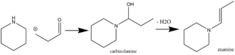 Enamine - Enamine synthesis with a carbinolamine intermediate.