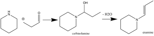 Enamine synthesis with a carbinolamine intermediate.