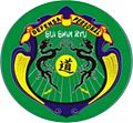 Escudo sui shin ryu.jpg