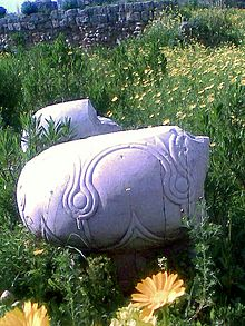 Two damaged white marble wheel like column bases lying in a yellow flower filled field. The front base shows finely carved intertwining circular decorations.