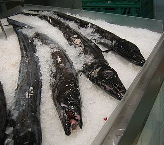 Portuguese cuisine - Black scabbardfish