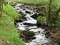 Exmoor , East Water - geograph.org.uk - 1212175.jpg