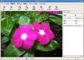 Eye of GNOME-screenshot-ja.png