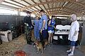 FEMA - 15181 - Photograph by Liz Roll taken on 09-09-2005 in Louisiana.jpg