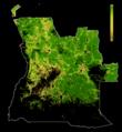 FLII Angola.png