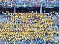 FWC 2018 - Group F - KOR v SWE - Team Sweden fans - 1.jpg