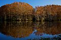 Fall Reflections on Greenfield Lake.jpg