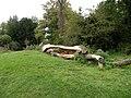 Fallen tree on Sheep's Green - geograph.org.uk - 988061.jpg