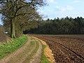 Farmland and footpath, Tilehurst - geograph.org.uk - 747338.jpg