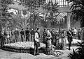 Fiançailles de la princesse Stéphanie avec l'archiduc Rodolphe en 1880 - UI.jpg