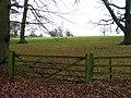 Fields near to St James Little Dalby - geograph.org.uk - 1141842.jpg