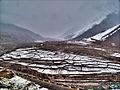 Fields of Snow (5453221945).jpg