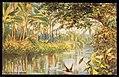 Fiji River Scene (NBY 441612).jpg