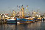Fishing ships in the Lauwersoog harbor.jpg