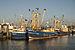 Fishing ships in the Lauwersoog harbor.jpg