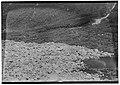 Fjellras, Hjørundfjord, Romsdals amt - fo30141512150013.jpg