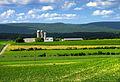 Flickr - Nicholas T - Buffalo Valley (5).jpg
