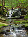 Flickr - Nicholas T - East Branch Falls (Upper Part) (3).jpg
