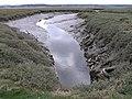 Floodplain Gully - geograph.org.uk - 254476.jpg