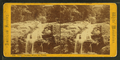 Flume Cascade, White Mountain Notch, from Robert N. Dennis collection of stereoscopic views.png