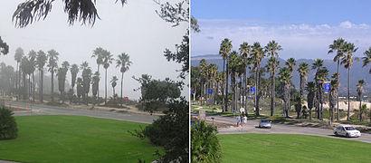 Fog&Sunny.jpg
