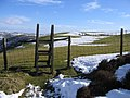 Footpath from Garreg Lwyd - geograph.org.uk - 336909.jpg