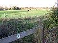 Footpath near Bratton - geograph.org.uk - 1585962.jpg