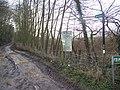 Footpath on Back Lane - geograph.org.uk - 1131274.jpg