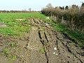 Footpath past Olivemead Farm, near Dauntsey - geograph.org.uk - 1209355.jpg