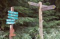 Footpath signposts, Duns Wood - geograph.org.uk - 1429654.jpg
