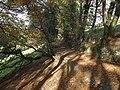Footpath to Boytonbridge - geograph.org.uk - 610146.jpg